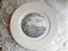 画像2: Saint-Amand&Hamage絵皿 (2)