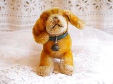 画像5: 通常価格¥8200→¥5740シュタイフ 犬のぬいぐるみ (5)