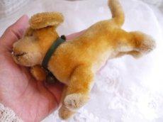 画像8: シュタイフ 犬のぬいぐるみ (8)