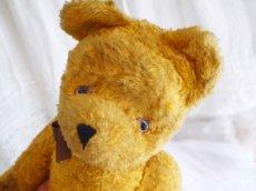 画像4: クマのぬいぐるみ (4)