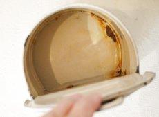 画像8: 小花柄クリーム色のセル缶 (8)