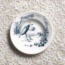 画像2: リュネヴィル ゲンゴロウ柄おままごと小皿 (2)