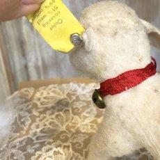 画像5: シュタイフ 白い羊のぬいぐるみ (5)