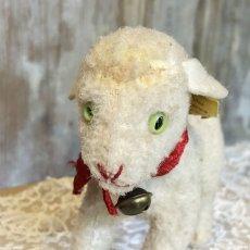 画像4: シュタイフ 白い羊のぬいぐるみ (4)