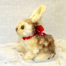 画像3: シュタイフ Pummy Rabbit (3)