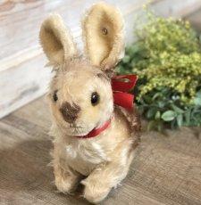 画像1: シュタイフ Pummy Rabbit (1)