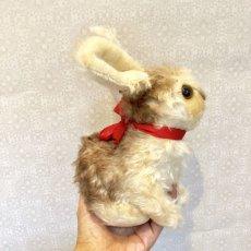 画像8: シュタイフ Pummy Rabbit (8)