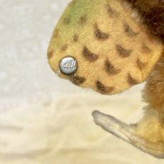画像7: シュタイフ フクロウ OWL WITTIE (7)
