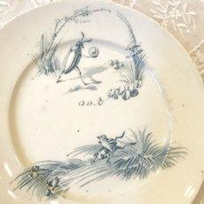 画像2: リュネヴィル ゲンゴロウ柄 おままごと小皿 (2)