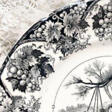 画像4: サルグミンヌ グリザイユプレート ゆりかごの柄 (4)