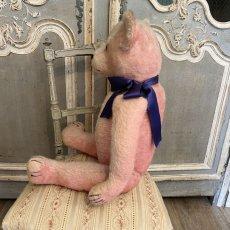 画像5: ピンク色の毛にブルーのリボンをした テディベア (5)