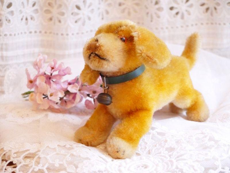 画像1: シュタイフ 犬のぬいぐるみ (1)
