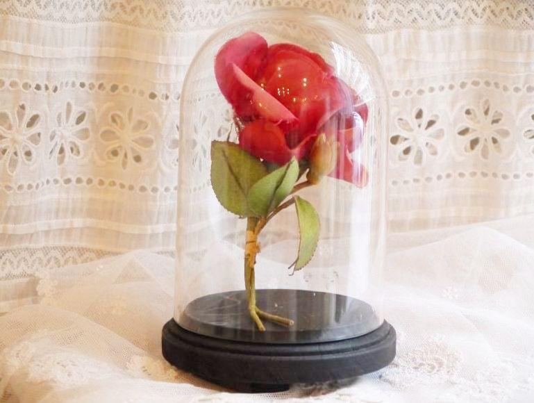 画像1: 小さめサイズのガラスドーム (1)