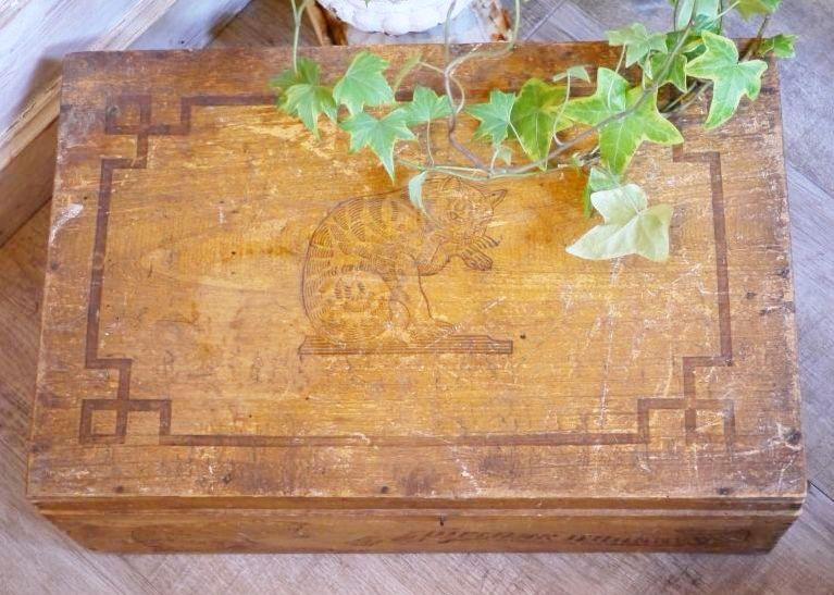 画像1: ホフマン社の木製猫柄アミドンBOX (1)